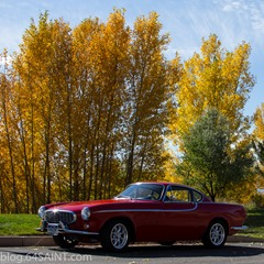Volvo 1800S in the fall